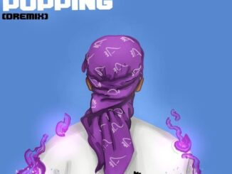 [Download Music] Dremo – What's Popping (Dremix)